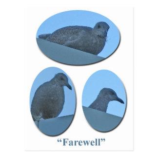 El joven de despedida Glauco-con alas Gulls la Postal