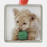 El jugar blanco del cachorro de león (krugeri de adorno navideño cuadrado de metal
