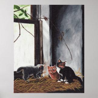 El jugar de los gatitos impresiones