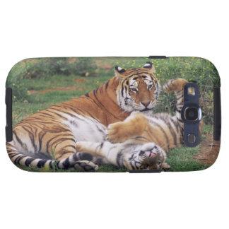 El jugar de los tigres de Bengala Galaxy S3 Cobertura