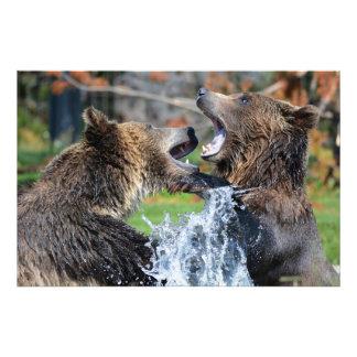 El jugar imponente de los osos grizzly cojinete