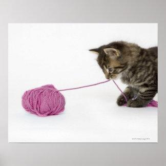 El jugar joven del gatito del tabby impresiones