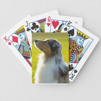 El jugar temático del póker de Bicycle® del pastor