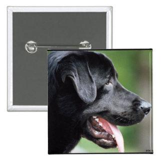 El Labrador negro Pin Cuadrado