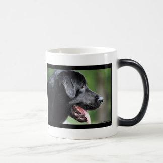 El Labrador negro Taza Mágica