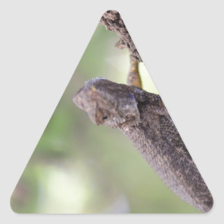 El lagarto amistoso calcomanías de triangulos personalizadas