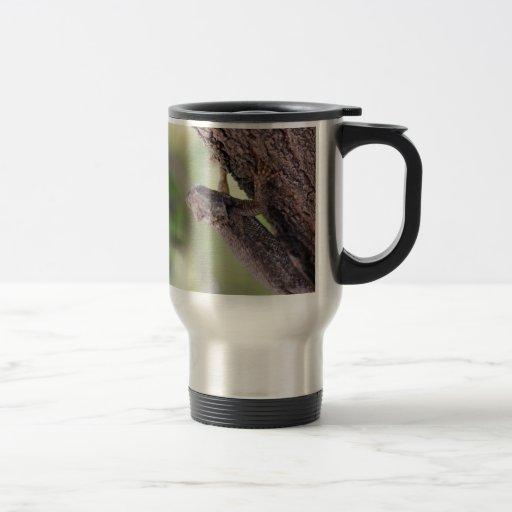 El lagarto amistoso tazas