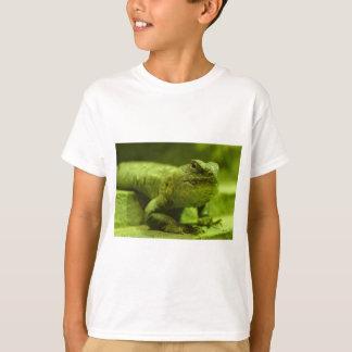 El lagarto verde playera