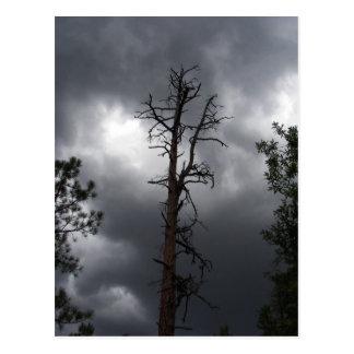 El lago lynx, Arizona, es un depósito de 55 acres Postal