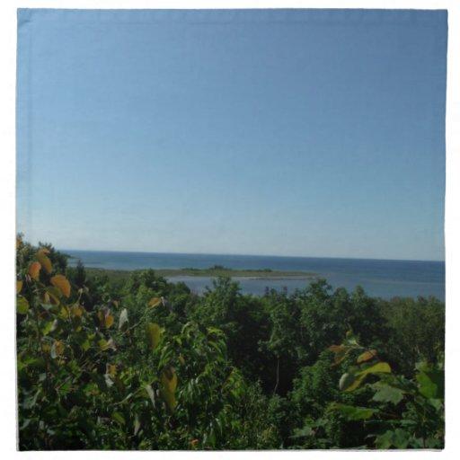El lago Michigan Servilleta De Papel