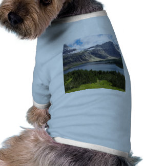El lago ocultado pasa por alto el Parque Nacional Camisas De Perritos