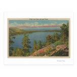 El lago Tahoe, CA - lago caido leaf y el lago Taho Tarjetas Postales