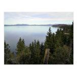 El lago Tahoe con los árboles de pino Tarjeta Postal