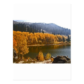 El lago Tahoe en el paisaje de la caída/del invier Tarjetas Postales