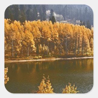 El lago Tahoe en el paisaje de la caída/del Pegatina Cuadrada