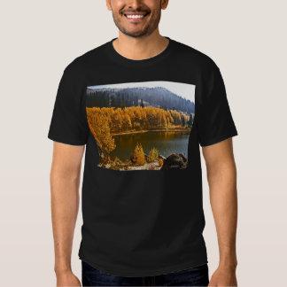 El lago Tahoe en el paisaje de la caída/del Playera