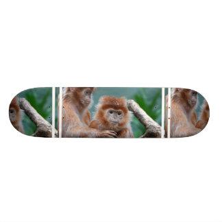 El Langur rojo Monkeys el monopatín Patín Personalizado