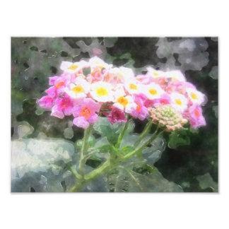 El Lantana florece la acuarela 2 Cojinete