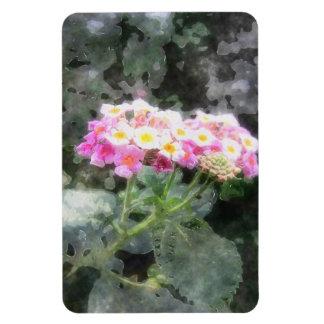 El Lantana florece la acuarela 2 Imanes Rectangulares