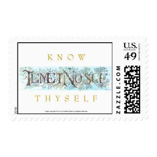 El latín para Know Thyself, dejó este m diario Sellos