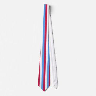 El lazo del rojo, blancos y azules de los hombres corbata