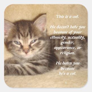 Él le odia porque él es un gato calcomanía cuadrada