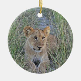 El león Cub adorna Ornamente De Reyes