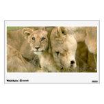 El león Cub Nuzzling con él es madre