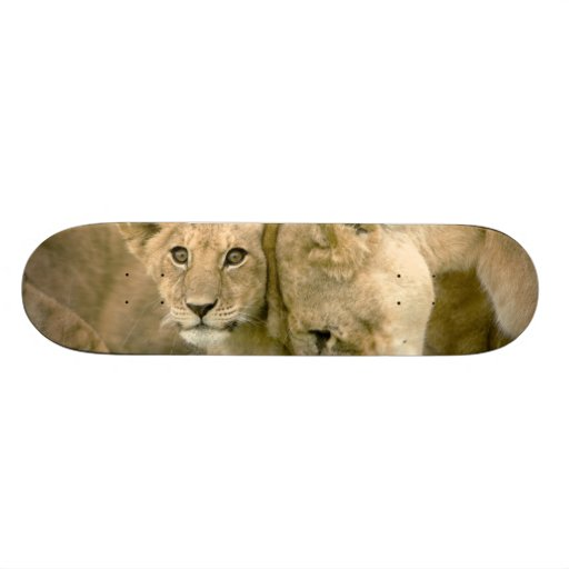 El león Cub Nuzzling con él es madre Patineta Personalizada