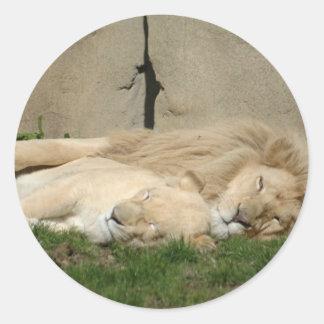 El león duerme esta noche en sus brazos etiquetas redondas