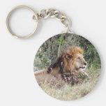 el león laze llavero personalizado
