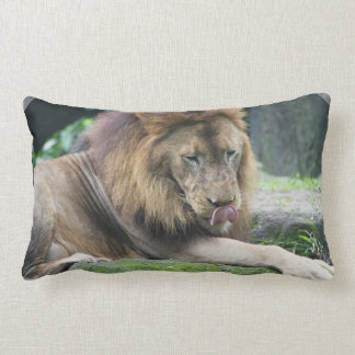 ¡El león que lame el suyo taja Cojin