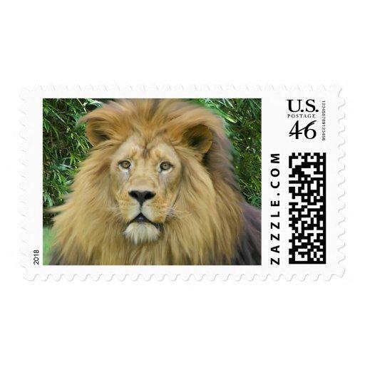 El león envio