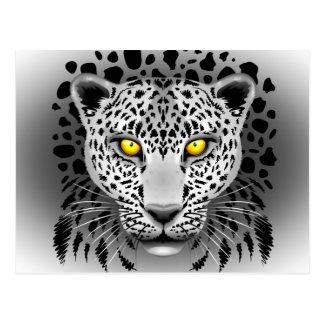 El leopardo blanco con amarillo observa las postal