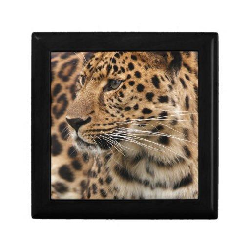 El leopardo joyero cuadrado pequeño
