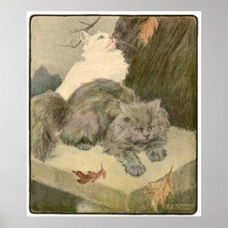 El libro del gato: El tigre de Tabitha refleja Póster