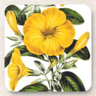 El lino francés botánico florece el práctico de posavasos para bebidas