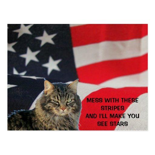 El lío con la bandera hace que usted considera las tarjeta postal