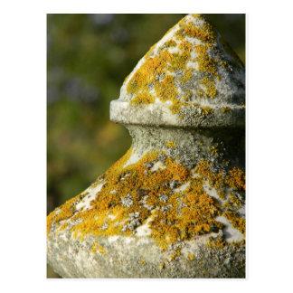 El liquen cubrió el obelisco del cementerio tarjeta postal