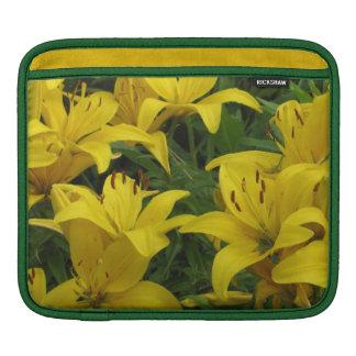 El lirio amarillo florece la manga del iPad horizo