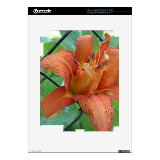 El lirio con el vínculo calcomanía para iPad 2