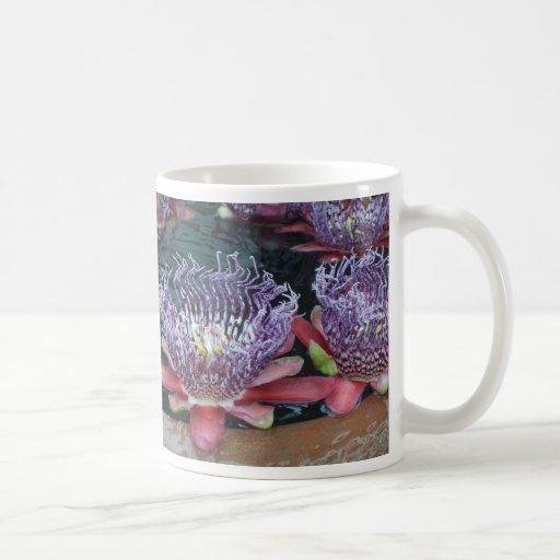 El lirio de agua florece la taza