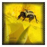 El lirio de Canna con manosea la abeja