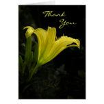 El lirio de día amarillo le agradece cardar tarjetas