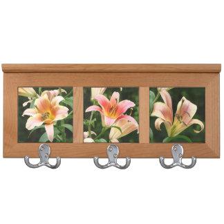 El lirio florece el estante de la capa