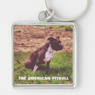 El llavero americano de Pitbull