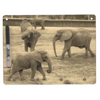 El llavero de los elefantes y seca al tablero del pizarras