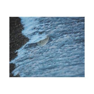 El llover en la línea de la playa del lago Michiga Impresion De Lienzo