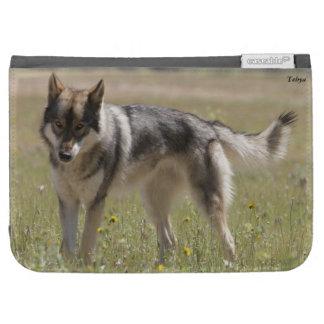 El lobo Caseable enciende el folio