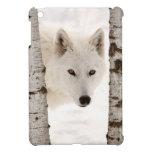 El lobo del invierno iPad mini cobertura